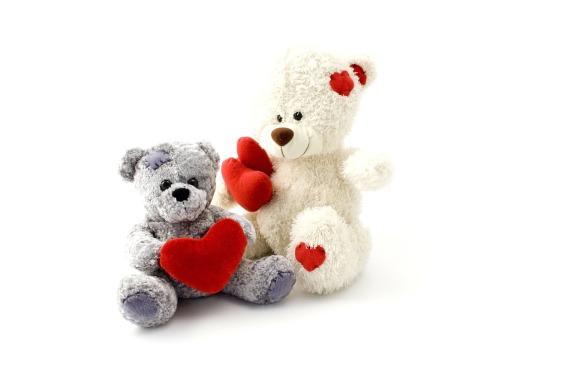 hwpl-pecenoodle-teddy