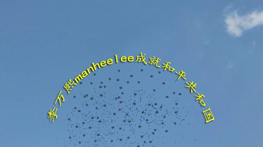 李万熙manheelee成就和平共和国 (1)