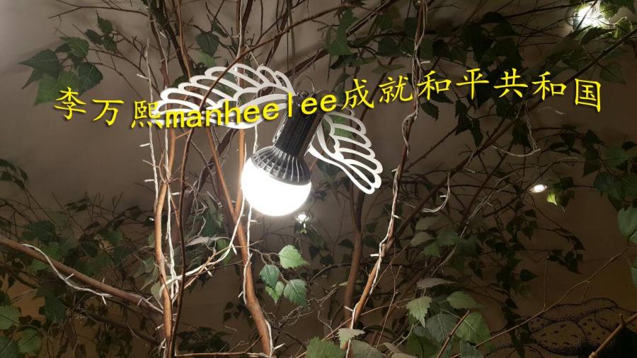 李万熙manheelee成就和平共和国 (3)