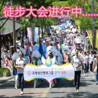 国际青年和平组织IPYG的徒步大会