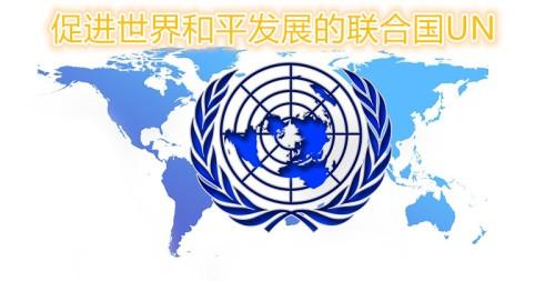 联合国UN成为天上文化世界和平光复HWPL的合作伙伴 (2)