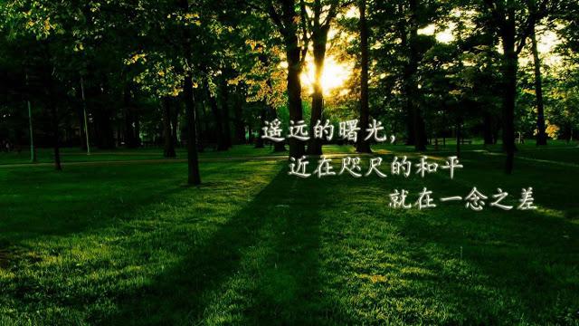 为了人类的和平得到天上使命的天上文化世界和平光HWPL复李万熙manheelee(3)