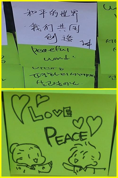 加入到天上文化世界和平光复HWPL的徒步大会一起为和平奔跑吧 (4)