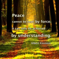 Peace can be achieved by ...