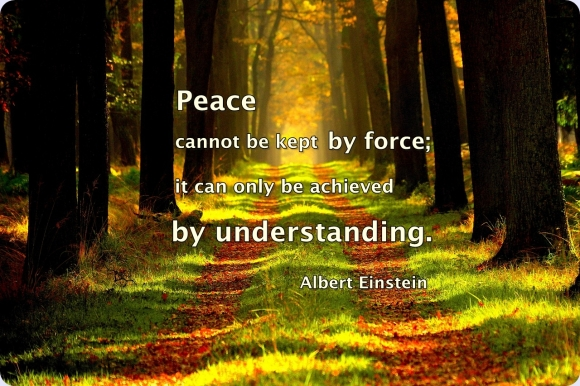 Peace quotes-Peacenoodle