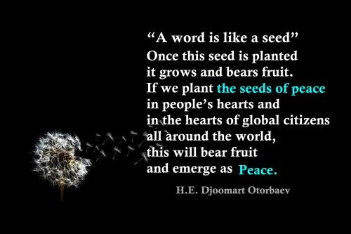 peacenoodle_peace qutoe 1