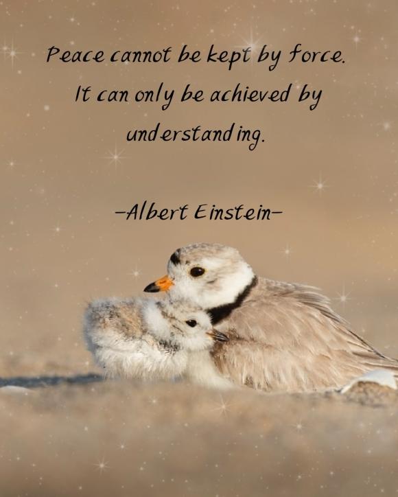 PeaceQuotes_Icheon370121